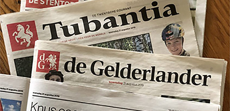 Gelderlander_kop